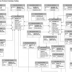 What Is An Entity Relationship Diagram?   Better Programming Throughout Entity Relationship Diagram Connectors