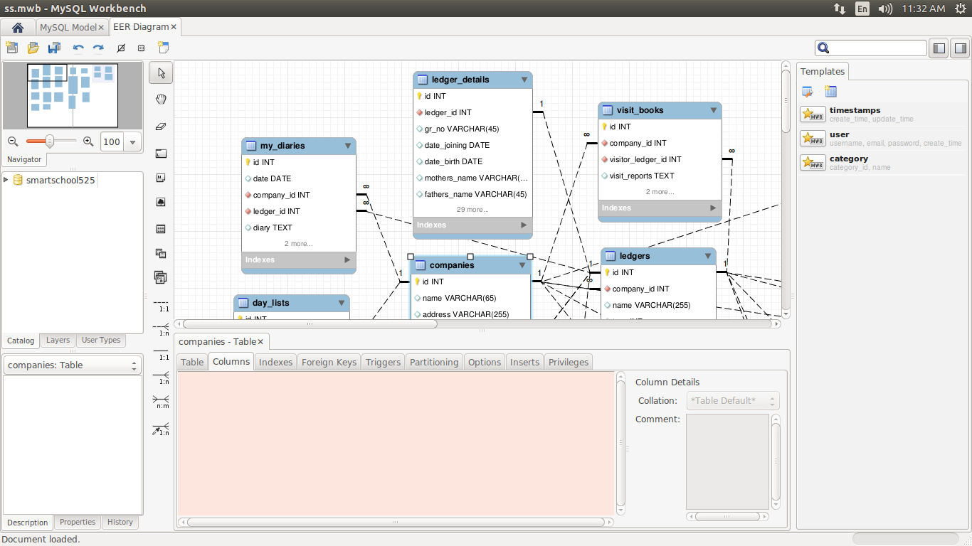 The Eer Diagram Editor Is Not Displaying Column Data And