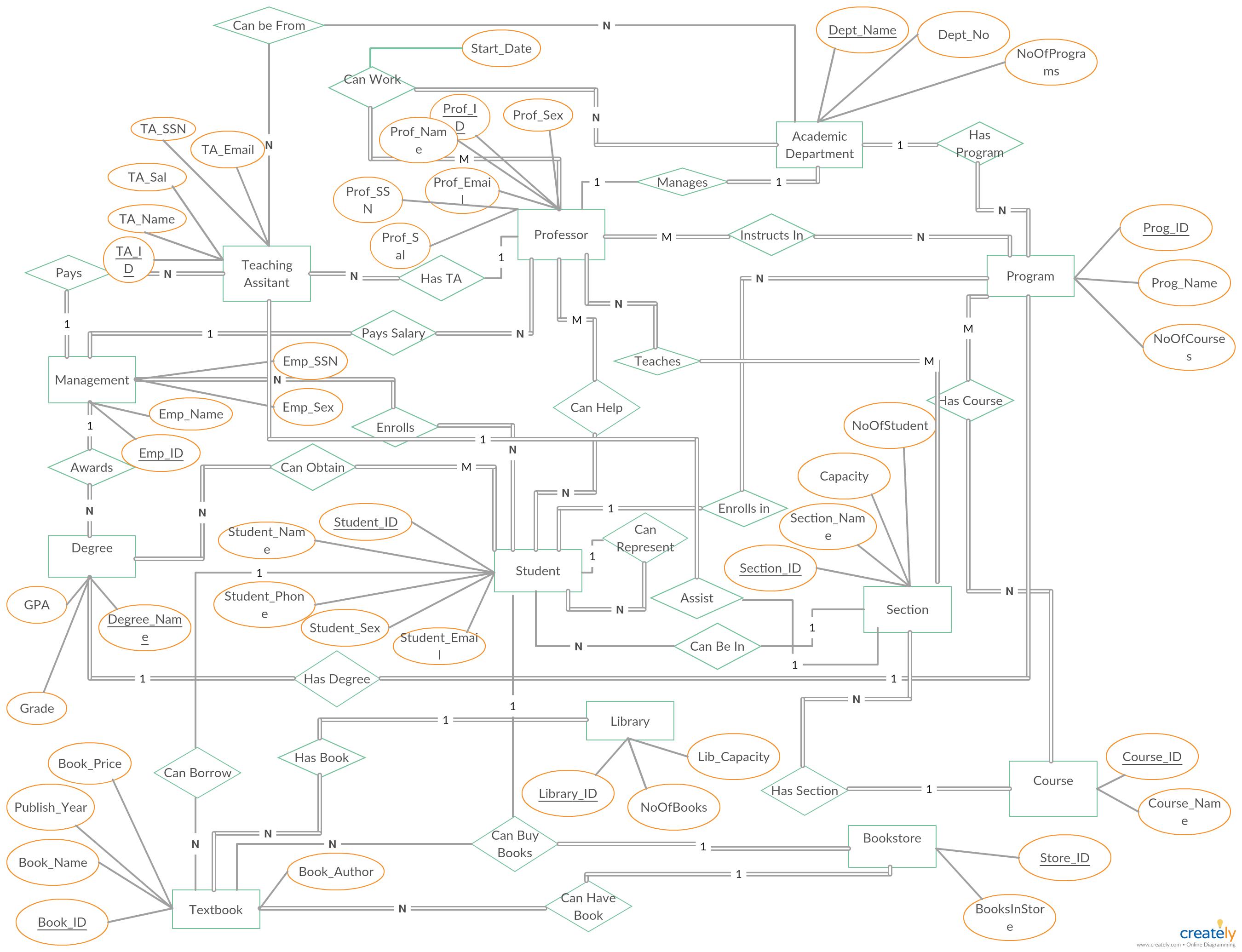 University Management System Er Diagram | University
