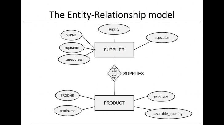 Permalink to Chapter 3: Data Models – Er Model throughout Er Diagram Video