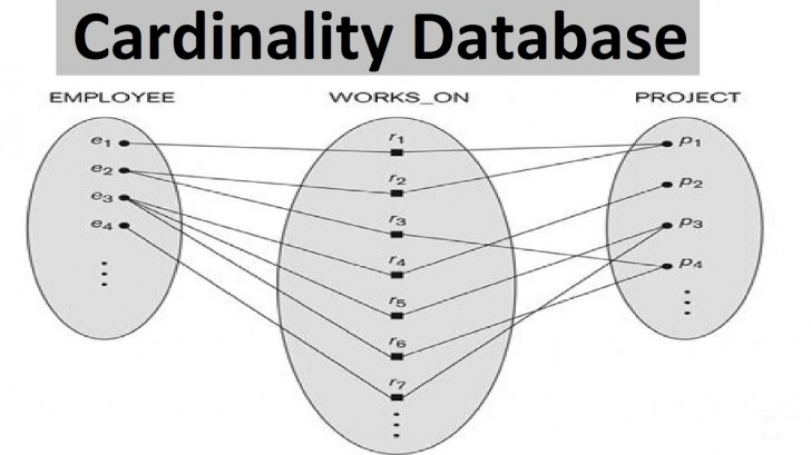 Permalink to Database – Database Cardinality [ With Examples ] with Entity Relationship Cardinality Examples