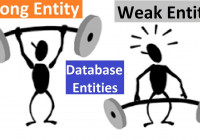 Database [ Dbms ] – Strong Entity Vs Weak Entity inside Database Weak Entity