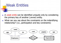 Entity Relationship Model. (Lecture 1) – Online Presentation within Relationship Between Entities