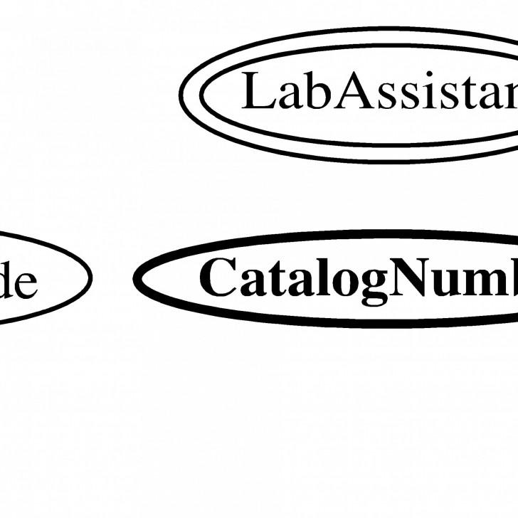Permalink to Entity-Relationship Model regarding Er Diagram Double Circle
