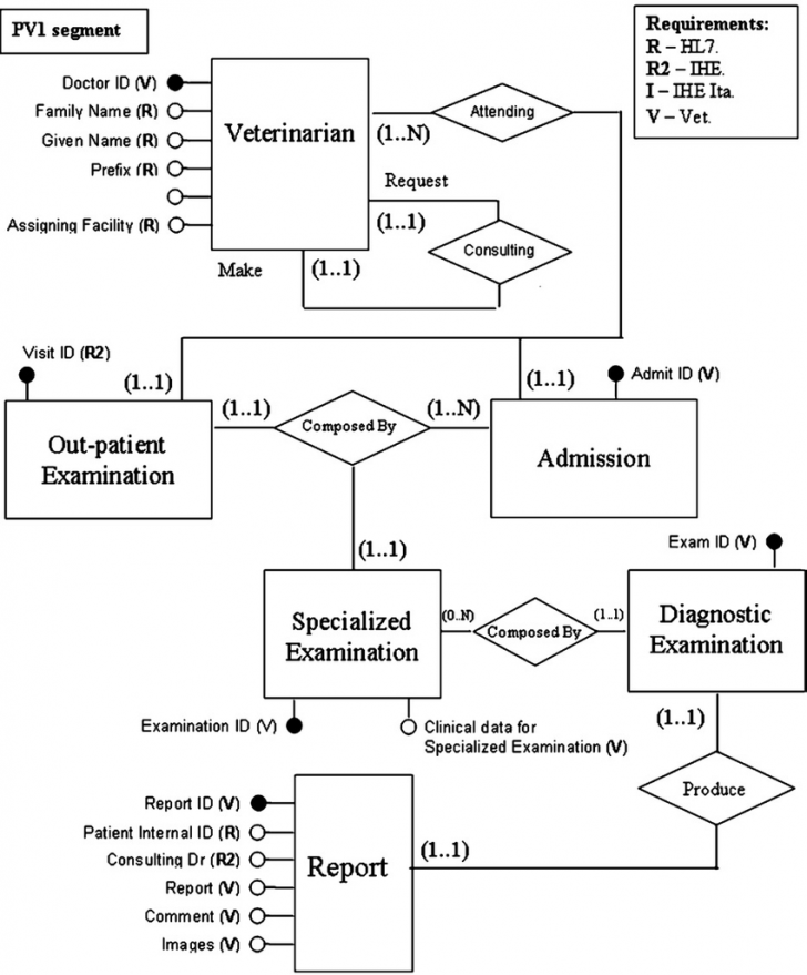 Permalink to Entity: Relationship Model; The Veterinary Electronic with Er Diagram Vs Er Model