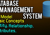 Er Model – Basic Concepts | Database Management System – 8 with regard to Er Model Basic Concepts