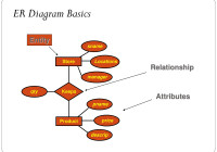 Er Relational Model – Powerpoint Slides in Er Diagram Disjoint