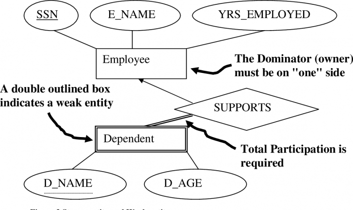 Permalink to Figure 1 From The Entity-Relationship (Er) Model | Semantic intended for Er Diagram Double Circle