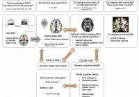 Frontiers | The Dancing Brain: Structural And Functional intended for Er Diagram In – Dance Class