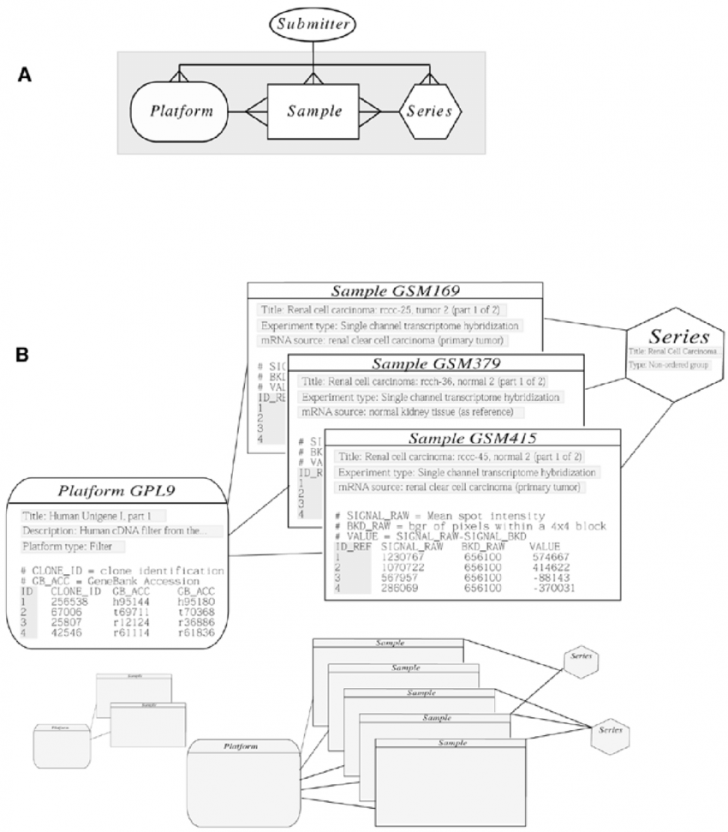 Permalink to Geo Schema And Example. (A) The Entity-Relationship Diagram for Er Diagram Schema