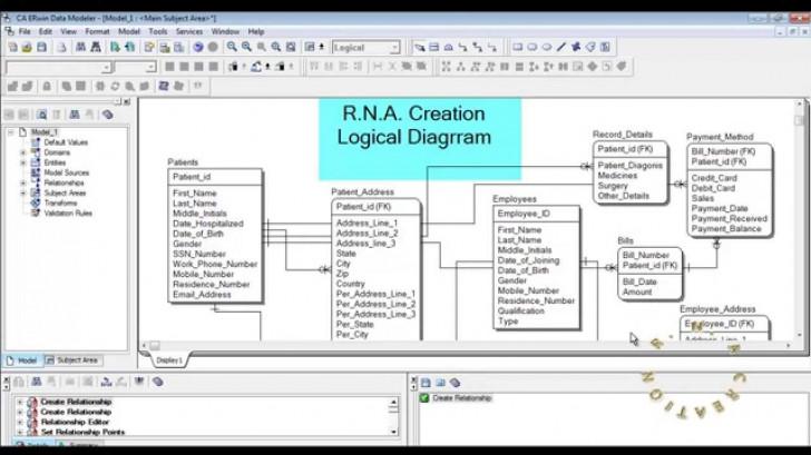 Permalink to Logical Model – Hospital System – Erwin Data Modeler inside Erwin Diagram