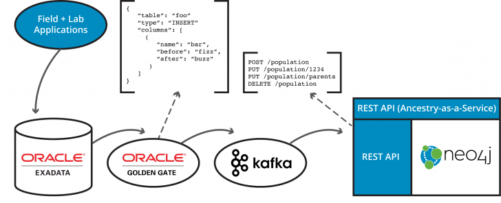 Permalink to Oracle Rdbms + Neo4J: Fully Sync Relational And Graph Data with Rdbms Diagram