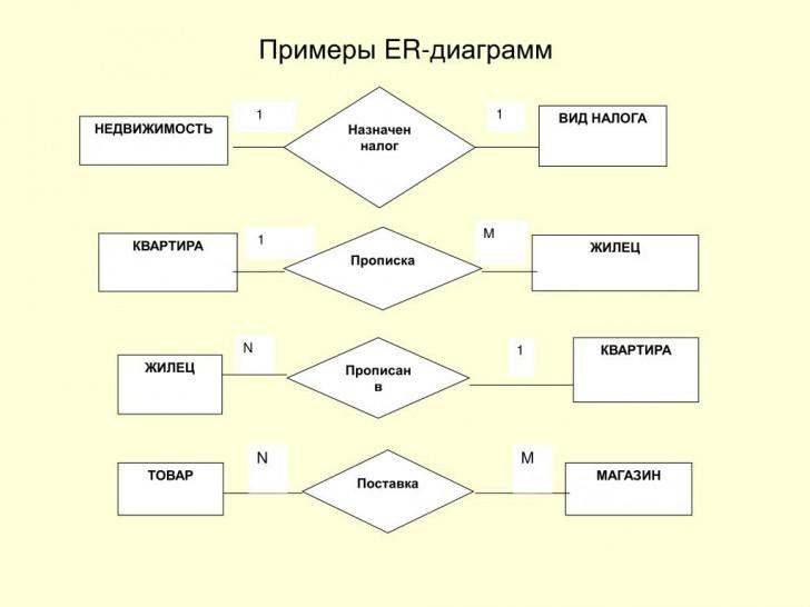 Permalink to Ppt – Презентация Методических Материалов По Курсу with regard to Er Diagramm 1 N M