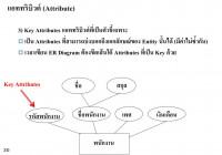 Ppt – บทที่ 2 E-R Model (Entity Relationship Model within บทที่ 4 Er Diagram