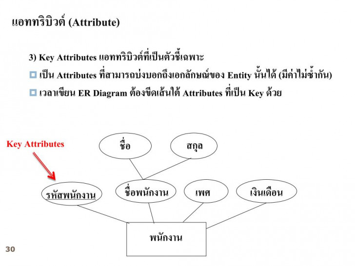 Permalink to Ppt – บทที่ 2 E-R Model (Entity Relationship Model within บทที่ 4 Er Diagram