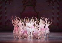 Where To See 'the Nutcracker' Around Philly And The Main Line with regard to Er Diagram In – Dance Class